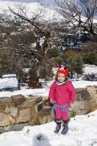 Snowy Elos